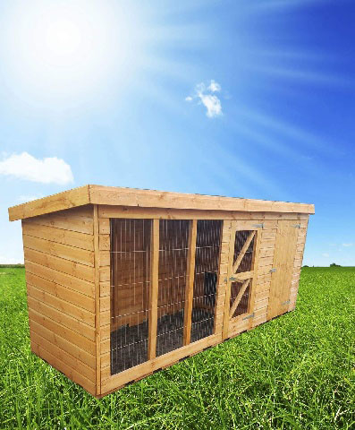 pent dog run - 4FT Pent Dog Kennel & Run